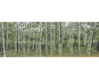 Birch Grove - Print