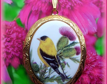 "PORCELAIN ""Goldfinch Bird Birds and Thistle Flowers Scotland Flower Cameo Locket Necklace with 24 inch Chain for Photos Keepsakes"