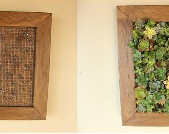 DIY Vertical Succulent Garden aka Living Wall