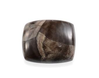 Utah Rhyolite Jasper Cushion Cabochon Loose Gemstone 1A Quality 12x10mm TGW 4.40 cts.
