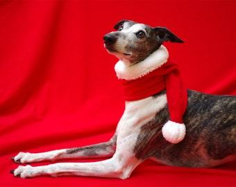 Dog SANTA hat, SANTA head muff, Dog CHRISTMAS hat