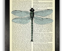 Green Dragonfly Art Print, Insect Illustration, Dictionary Art Print, Garden Wall Decor, Gift for Gardener, Insect Painting, Cool Artwork