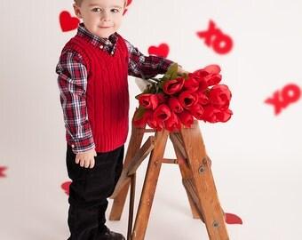 INSTANT DOWNLOAD-Valentines Day  Backdrop! xoxo DIGITAL backdrop