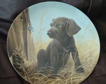 Command Performance The Weimaraner / Edwin M. Knowles Collector Plate - 1989 Limited Edition Field Puppies Series