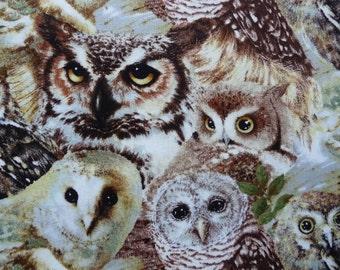 Owl Fabric, Woodland Fabric, Owls of Wonder, Giordano Studio, Owl Quilt Fabric, Cotton Fabric, Woodland Quilt Fabric, Bird Fabric