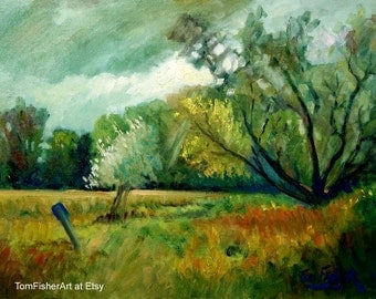 Original Willow Field Plein air original oil painting landscape painting impressionist by tomfisherart