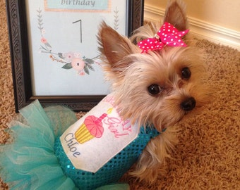 BIRTHDAY Girl Dog Dress/ Cupcake and Candle embroidery/ Personalization/ you pick colors/ priced according to size, please see listing