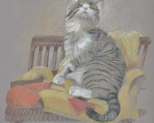 Cat portrait, colored pencil or watercolor.  Created from your photographs.  Blank note cards can be made from the finished painting.