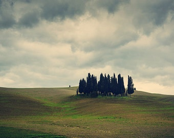 Digital Photogrpahy Download - Landscape Photography - Tuscany field