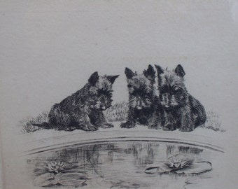 """Marguerite Kirmse Original Signed Artist's Proof Etching """"The Pool""""   Scottie Dogs Puppies and gold fish"""