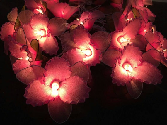 fairy lights 20 pink flower fairy string lights by