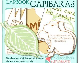 Lapbook sobre las capibaras -español-