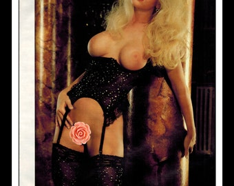 "Mature Celebrity Nude : Jenny McCarthy Single Page Photo Wall Art Decor 8.5"" x 11"""