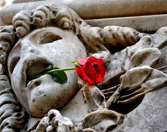 Rome, Italy - Rose Statue - Print [Stone Cold Love]