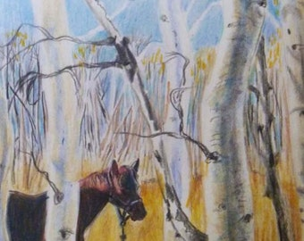Quaking Aspen Horse Card print