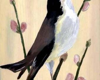 Bird Note Cards Carolina Chickadee Stationery Original Art