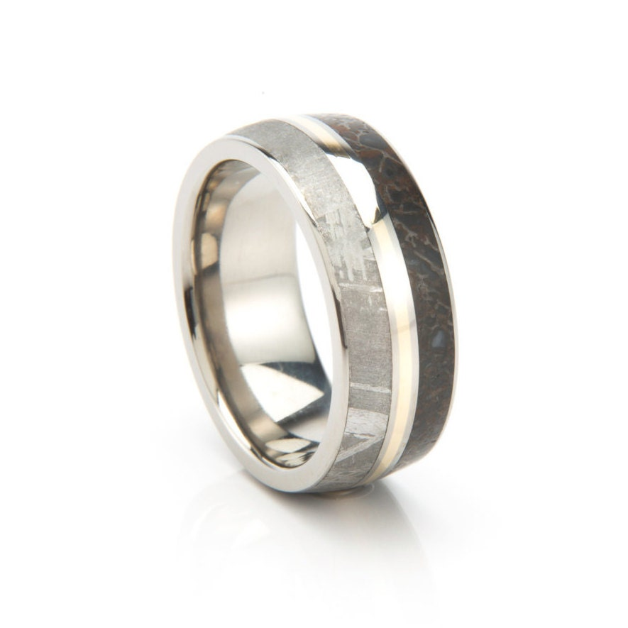 Meteorite Ring Dinosaur Bone Wedding Band With A By