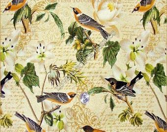 "David Textiles Rosenthal Mixed Birds Floral Words Cotton Fabric 1/2 Yard 18"" x 44"""