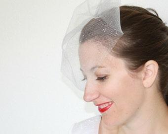 Bachelorette Veil, Sparkle, Birdcage Veil, Wedding Veil, Crystal Veil, Simple Veil, Face Veil, Custom Made Veil, White Wedding Veil, Bridal