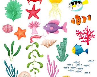 Ocean Life Clip Art and Backgrounds