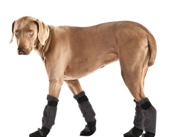 WEIMARANER Dog Booties, Dog Shoes, Dog Boots, Dog Clothing, Booties