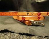 Hearts leash , Red leather leash , Dog leash , hearts dog leash , hand tooled hearts leash , leather lead , red , tan