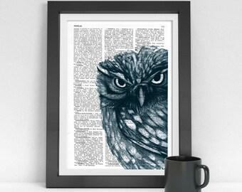 Spring Sale Owl Dictionary page book art print Dark Blue Owl Print on dictionary page illustration book print art BPAN023