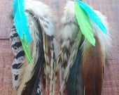 The Rainbow Gypsy Feather Earrings, cruelty free long feather earrings, natural feather earrings