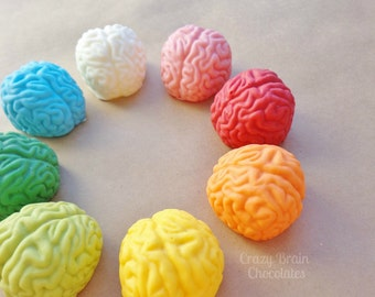 Solid Chocolate Brains (4)