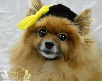 Pet Graduation Hat (XS-XL)