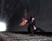 Dark Iridescent Realistic Fairy wings