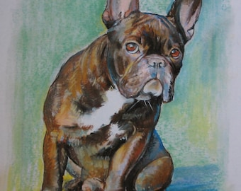 Drawing French Bulldog, 27.5 x 40.5 cm 2013, pastel, print! Limited Edition! Order a picture according to your favourite motif!