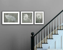 Rustic prints set, wall gallery prints, queen anne's lace prints collection, grey muted prints, foyer decor, entry art, flower photography