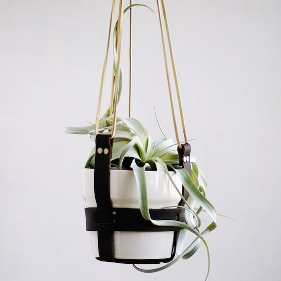 Modern Leather Band Hanging Planter Living By Thezensucculent