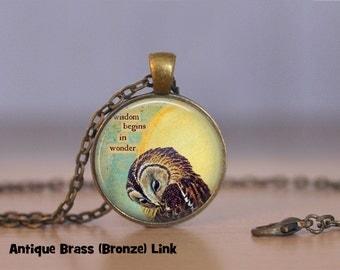 Bashful Owl Pendant Necklace or Owl Keyring Owl Jewelry Owl Pendant Owl Necklace Bird sun wisdom begins in wonder