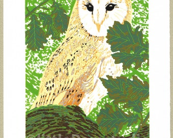 Owl print -  Barn Owl Art - Limited Edition Linocut Reduction Print - Contemporary Fine Art