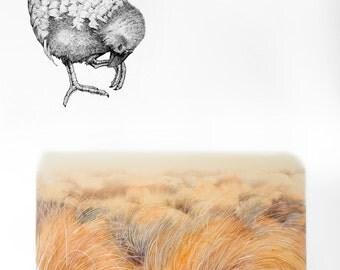 Takahe, Lost & Found - archival print from original painting