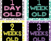 Baby Girl Monthly Birth Stickers & Iron-ons Newborn - 1 Year - 17 Stickers Total DOWNLOAD!  Modern Bright Colors on Black Squares