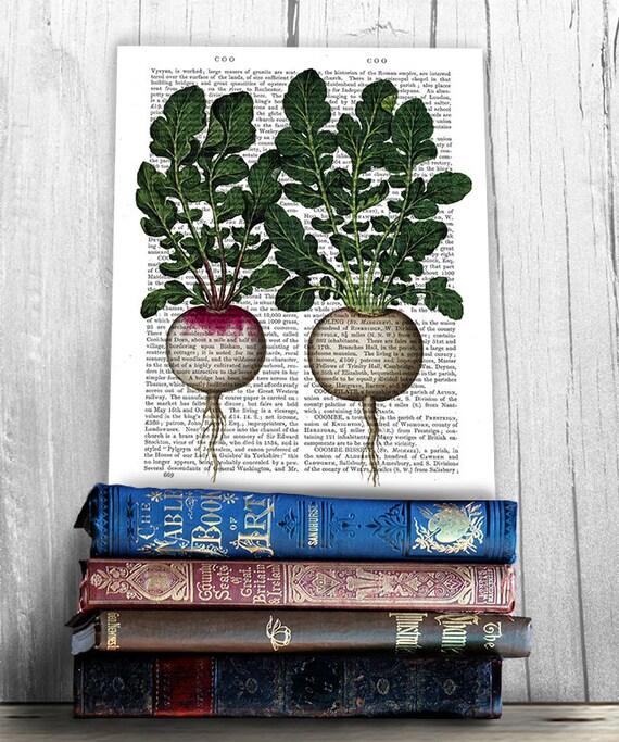 Kitchen Decor Vegetables: Radish Print Vegetable Print Kitchen Print Kitchen Decor