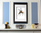 Mosquito Art Giclee Print Insect Art