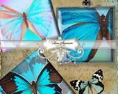 Beatiful butterflies - 1x1 inch Digital Collage Sheet Printable Download for pendants magnets paper craft scrapbooking journalig
