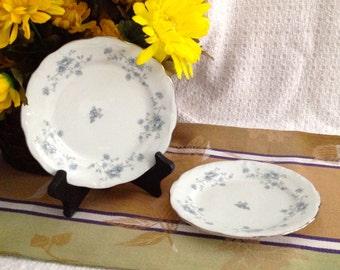 Johann Haviland China, Blue Garland, Bavaria Germany Cake Plates, Set of 2,  desert plates, bread plates