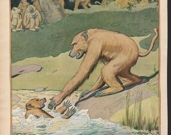 Original James Swinnerton illustration from early Good Housekeeping; baboon- Kids882