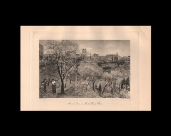 """Original matted print from The Art of Walter Crane - 1902, """"Almond Trees on Monte Pincio, Rome""""  - 000165M"""