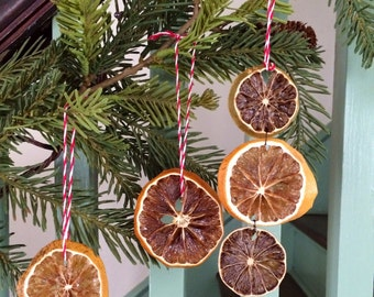3 dried fruit ornaments