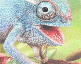 Chameleon Drawing - mounted print of original coloured pencil drawing