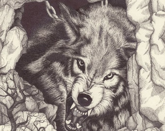 Fenrir Chained - Growling Wolf drawing - mounted print of original pen and ink drawing