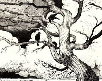 Huginn and Muninn raven drawing - mounted print of original pen and ink drawing