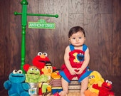 Personalized Sesame Street Sign - Sesame Street Party Inspired Sign - Personalized GREEN Street Sign