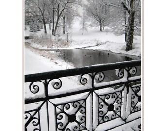 Curlicue Bridge with Frosting